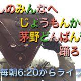 [終了]YouTubeライブ配信「縄文仮面と茅野どんばん音頭を踊ろうよ!!」を始めます